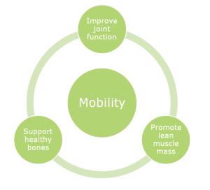 Mobility Circle csm_Peptan_Mobility_Circle_226bbb1ad8